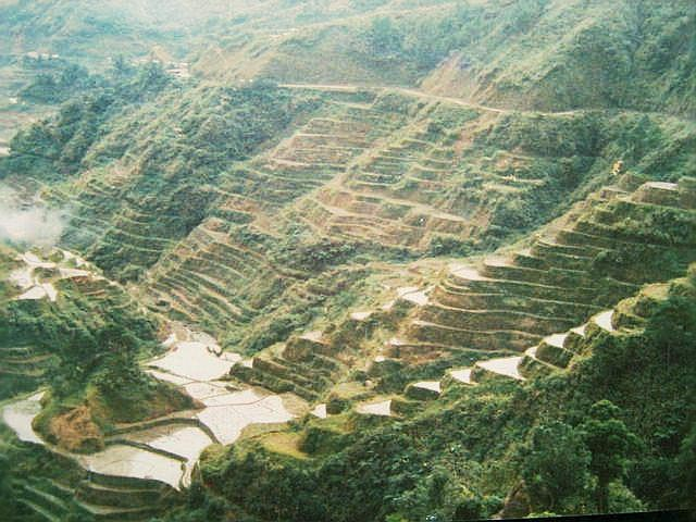 Rice Terraces at Banaue in the Philippines