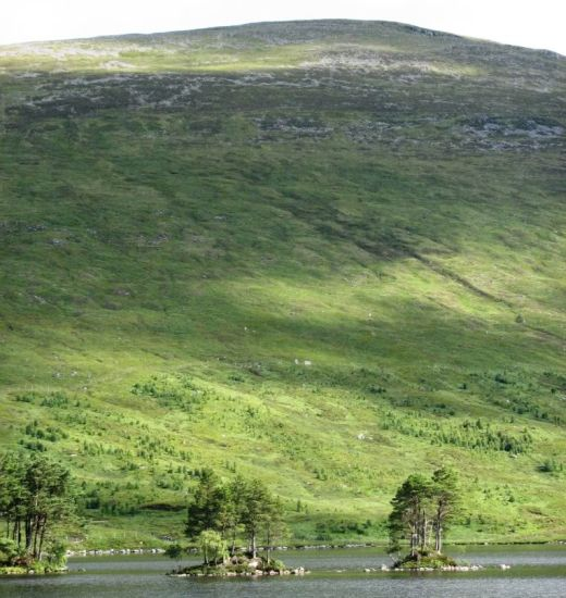Beinn na Lap above Loch Ossian in the Highlands of Scotland