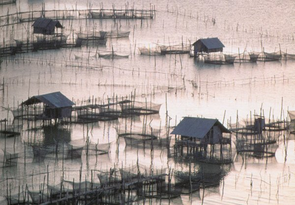 Photographs and map of the city of songkhla in southern for Fish farms in california